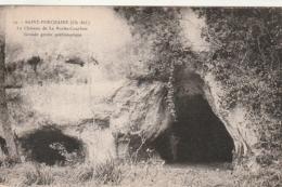 ***17 *** SAINT PORCHAIRE  Château De La Roche Courbon  Grande Grotte Préhistorique Neuve TTB - Autres Communes
