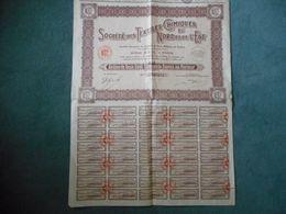1 Action Sté Des TEXTILES CHIMIQUES Du NORD & De L'EST - 1928 Paris - Textile