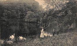 Tervueren Tervuren - Le Grand étang Dans Le Parc (animée Cygnes, Edition Decock) - Tervuren