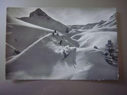 Schussfahrt Im PULVERSCHNEE - Ski Neige Sports D'hiver - Sport Invernali