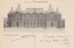 Lille - 1902 - Palais Des Beaux Arts - Scan Recto-verso - Lille