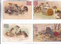 CHATS - Lot De 4 Cartes Dont 3 VOY EN 1904 Dont Une Gauffrée Voir Scan Verso - La 4ème Chat Gris Noir Très Belle - Chats