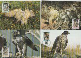 Island 1992 MK MiNr.776 - 779 Weltweiter Naturschutz, Gerfalke ( D 635 ) Günstige Versandkosten - Cartoline Maximum