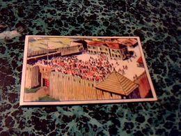 """Image Chocolat LOUIT Image No 1 """" Ford Edward """" Album Le Dernier Des Mohicans - Louit"""