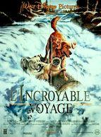 Aff Ciné Orig L INCROYABLE VOYAGE (1993) 120x160 Disney - Affiches & Posters