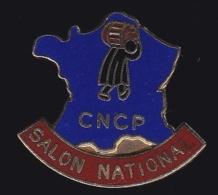 65536-Pin's-Commission Nationale De La Certification Professionnelle (CNCP) - Administrations
