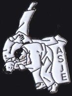 65551-Pin's-ASJE Judo Epinay Sur Orge. - Judo
