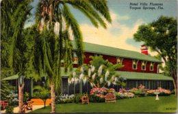 Florida Naples Coconut Palms Along The Beach 1956 Curteich - Naples