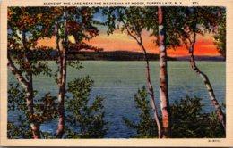 New York Tupper Lake Scene Of The Lake Near The Waukesha At Moody Curteich - Adirondack