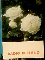 RADIO PECHINO SEZIONE ITALIANA  QSL 1976 CALENDARIO  HQ9480 - Radio
