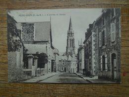 Carte Assez Rare à Ce Prix , Pleudihen , L'arrivée De Dinan - Francia
