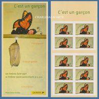 FRANCE 2004 CARNET/BOOKLET 5€ C'EST UN GARCON / IT'S A BOY  PAPILLON / BUTTERFLY - Definitives