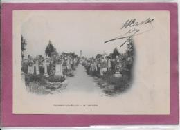 54.- COLOMBEY-LES-BELLES .- Le Cimetière - Colombey Les Belles