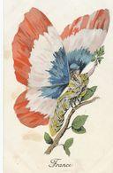 Surrealisme Patriotique Femme Papillon Guerre 14 . Butterfly Woman . . French Flag . Drapeau - Papillons
