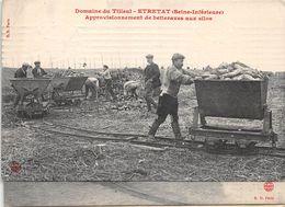 ¤¤  -   ETRETAT   -  Domaine Du Tilleul  -  Approvisionnement De Betterave Aux Silos  -   ¤¤ - Etretat
