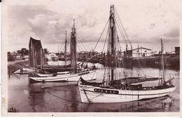CPSM LORIENT LE PORT DE PECHE - Lorient