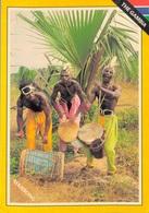 GAMBIA / MANSONG (avec PHILATELIE) - Gambie