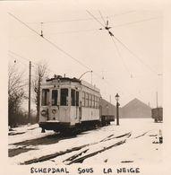 Schepdael , Schepdaal ,( Dilbeek ), Photo De Tram Sous La Neige , Automotrice - Dilbeek