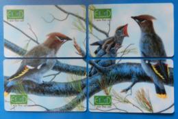 Israel Puzzle Complete X4 Cards Bird Oiseaux Vogel Birds Waxwing Economcard - Oiseaux