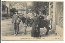 64-SALIES-DE-BEARN-Les Promenades à Ane...1919  Animé - Salies De Bearn