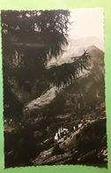 ST SAINT COLOMBAN DES VILLARDS, Isère,  Le Village Et Ses Deux Clochers,  Ed Mic Photo Michallet, Juillet 1949, TB - Sonstige Gemeinden