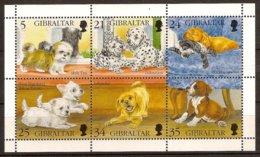GIBRALTAR 1996 Mi 749-54 Minisheet** Dogs – Puppies [L 872] - Dogs
