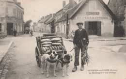 45) OUZOUER SUR LOIRE (LOIRET) LE BOULANGER ET SON ATTELAGE - (VOITURE A CHIENS - ATTELAGE DE CHIENS - 2 SCANS) - Ouzouer Sur Loire