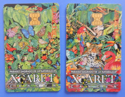 Mexico X2 Butterfly Papillon Mariposa Farfalla Fauna Animal Bird Ladatel Xcaret Calendar Telmex - Mexico