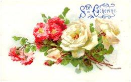 C. KLEIN - Roses - Ste Catherine - Klein, Catharina