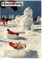 UNTERIBERG Schnee-Skulpturen Hoch-Ybrig - SZ Schwyz
