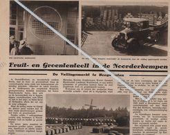 HOOGSTRATEN..1934..FRUIT EN GROENTENVEILING IN DE NOORDERKEMPEN - Old Paper