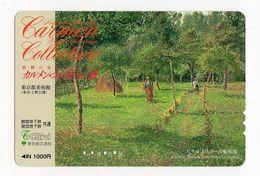 JAPON CARTE PREPAYEE PEINTURE MUSEE Thyssen-Bornemisza  Madrid (Espagne) - Malerei