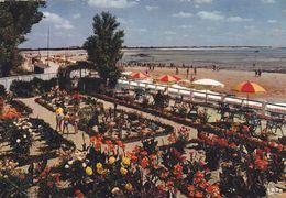 85,VENDEE,LA TRANCHE SUR MER - La Tranche Sur Mer