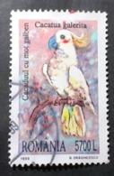 Roumanie >   Républiques > 1991-00 > Oblitérés N° 4539 - Usati