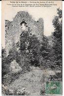 Cpa Ruines De La Tour De La Chartreuse De Port Sainte-Marie (côté Sud). - Environs Des Ancizes . /  Peu Courante. - Sonstige Gemeinden