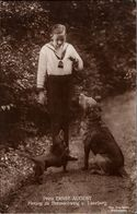! Alte Ansichtskarte, Adel, Royalty, Haus Braunschweig-Lüneburg Prinz Ernst August, Hunde, Dogs, Dackel - Familles Royales
