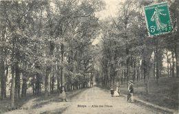 CPA 33 Gironde Blaye Allée Promenade Des Cônes - Blaye