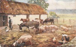 """An Irish Farmyard"" Tuck Oilette Irish Life Series PC # 9354 - Tuck, Raphael"