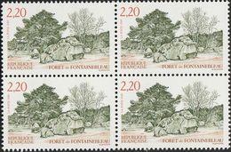 Forêt De Fontainebleau    Y 2586  1989 - France