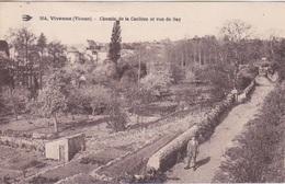 86 - VIVONNE -  CHEMIN DE LA CARLIERE- VUE DE SAY - Vivonne
