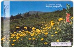BULGARIA A-842 Chip BulFon - Plant, Flower - Used - Bulgarie