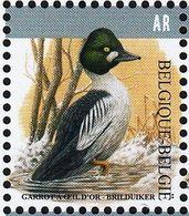 Belgium 2020 Fauna Bird Common Goldeneye 1vMNH - Oiseaux