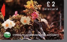 Télécarte CHYPRE -TELECARD £ 2 - Cyprus