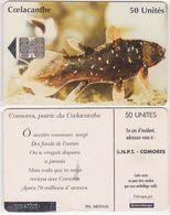 46/ Comoros; P16. Coelacanthe, CN Yellow - Comore