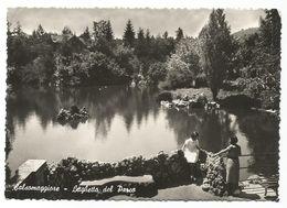 XW 2611 Salsomaggiore Terme (Panorama) - Laghetto Del Parco - Panorama / Viaggiata 1959 - Italien