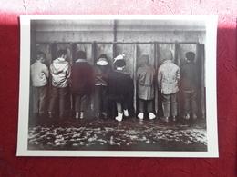 CPM ROBERT DOISNEAU THE BOY AND THE DOVE LE GARCON ET LA COLOMBE 1960 - Doisneau
