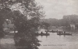 Royaume-Uni - England -Sheffield - Forge Dam - Canot Bâteaux - Sheffield