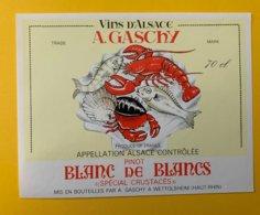 15100  -  Alsace  Pinot Blanc De Blancs Spécial Crustacées  A.Gaschy - Etiquettes