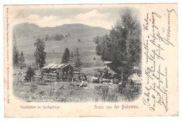 Gruss Aus Der Bukowina - Leon Konig Czernowitz Ukraine Romania - Waldhutten Im Hochgebirge - Rumänien