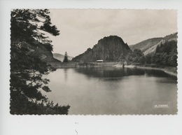 Rochetaillée : Le Barrage, Environs De Saint Etienne (n°313) - Rochetaillee
